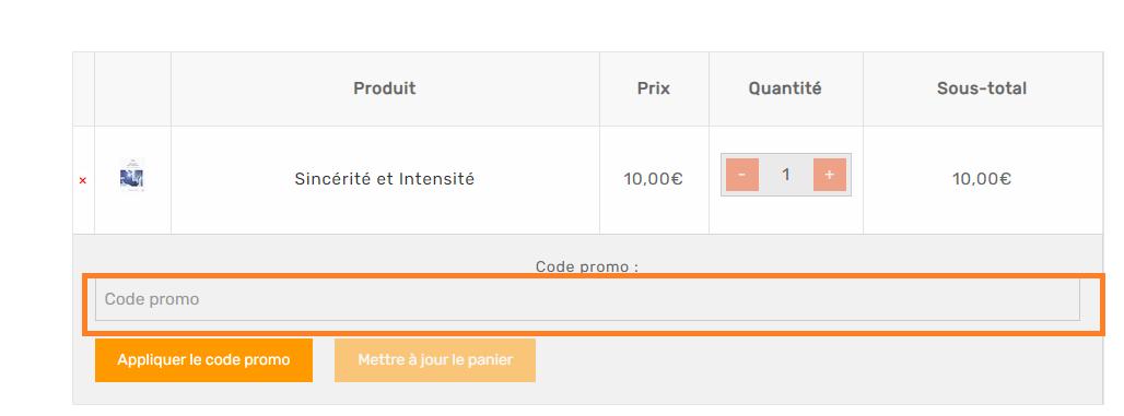 Où mettre un code promo SHANKARA France valide ?
